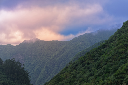 Picture no: 12022770 Madeira Landschaft Created by: Dennis Gross