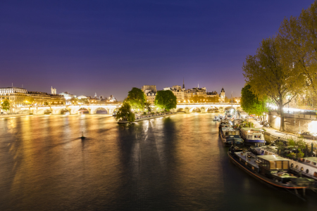 Picture no: 12024940 Pont Neuf und die Ile de la Cite in Paris Created by: dieterich