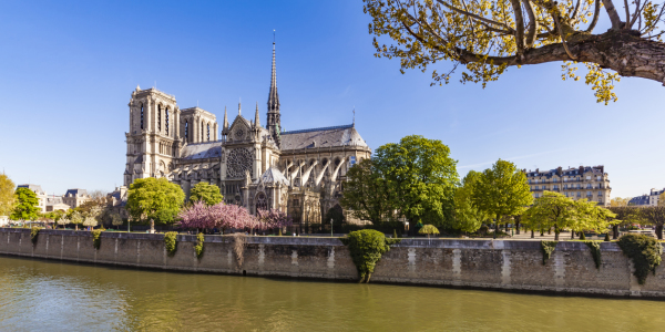 Picture no: 12024941 Notre Dame auf der Ile de la Cite in Paris Created by: dieterich