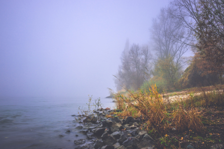 Picture no: 12026640 Nebel am Rheinufer Created by: Marc Braner