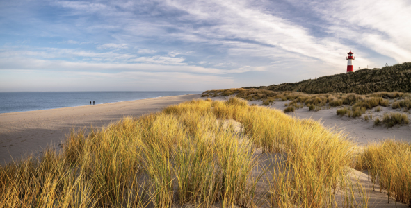 Picture no: 12028543 Weststrand Sylt Created by: Achim Thomae