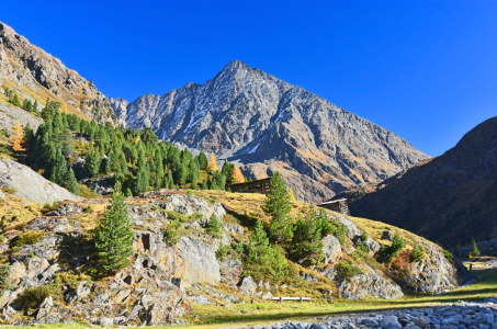 Picture no: 12044490 Herbstliche Berglandschaft in Tirol Created by: Andifo