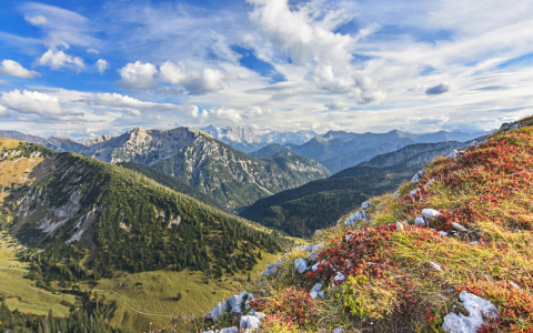 Picture no: 12044580 Panorama Ammergauer Alpen mit Zugspitzblick Created by: Andifo