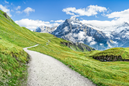Picture no: 12056994 Schweizer Alpen  Created by: eyetronic