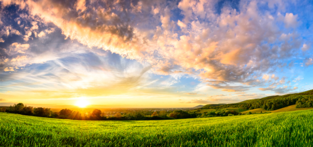 Picture no: 12057478 Panorama of a colourful sunset on a green meadow Created by: Smileus