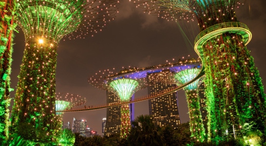 Picture no: 12062945 Supertrees im Garden by the Bay - Singapur Created by: orxy
