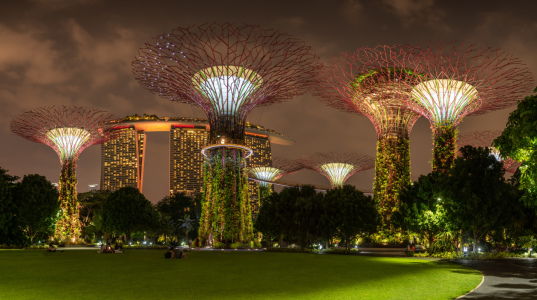 Picture no: 12062946 Supertrees im Garden by the Bay - Singapur Created by: orxy