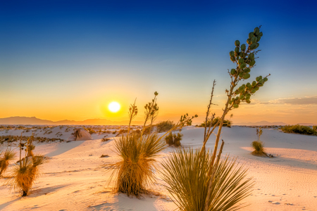 Picture no: 12093534 Sonnenuntergang - White Sands National Monument Created by: Melanie Viola