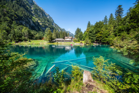 Picture no: 12097504 Blausee  Created by: eyetronic