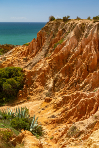 Picture no: 12098751 Küstenlandschaft an der Algarve Created by: DirkR