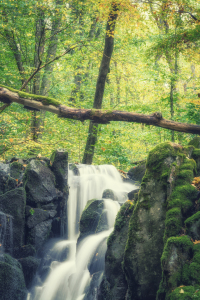 Picture no: 12118144 Wasserfall im Herbstwald Created by: luxpediation