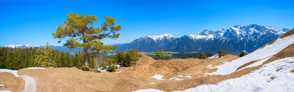 Picture no: 12162827 Panorama Landschaft Kranzberg Mittenwald Created by: SusaZoom