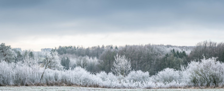 Picture no: 12168918 Landschaft im frostigen Winter Created by: luxpediation