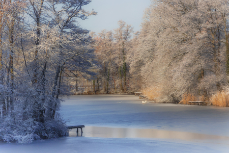 Picture no: 12174539 Winter Morning Created by: PassionPhotography
