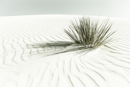 Picture no: 12243101 DÜNEN White Sands National Monument - Vintage Created by: Melanie Viola