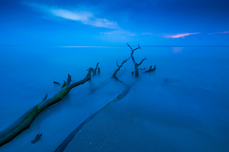 Picture no: 12255577 Blaue Stunde am Weststrand Created by: Martin Wasilewski