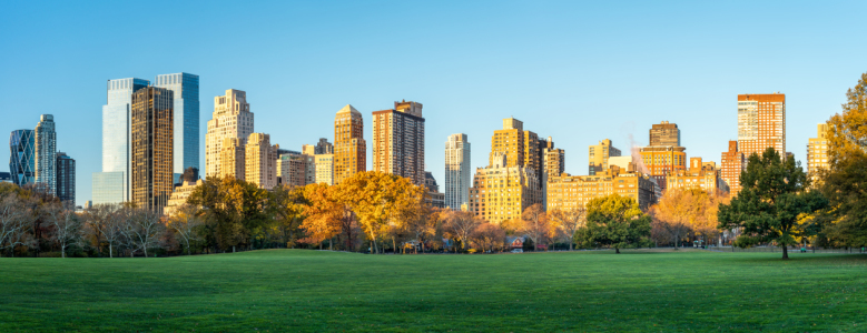 Picture no: 12256113 Central Park Panorama im Herbst Created by: eyetronic