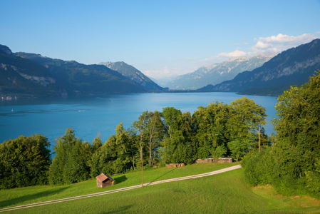 Picture no: 12269617 Thunersee im Berner Oberland Created by: SusaZoom