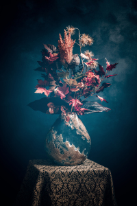 Picture no: 12275516 Herbst Blumen Created by: Steffen Gierok