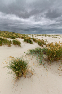 Picture no: 12291069 Strand an der Nordsee Created by: DirkR