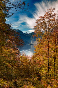 Picture no: 12321740 Königssee Created by: DirkR