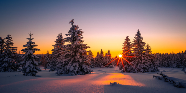 Picture no: 12383375 Winterlandschaft bei Sonnenaufgang Created by: PH-Photography