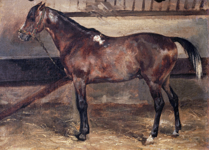 Picture no: 30001662 Géricault / Brown Horse in the Stalls Created by: Géricault, Théodore