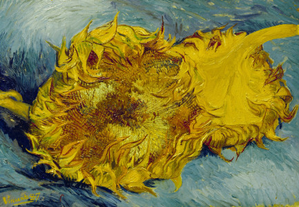 Picture no: 30002854 Van Gogh / Sunflowers / 1887 Created by: van Gogh, Vincent
