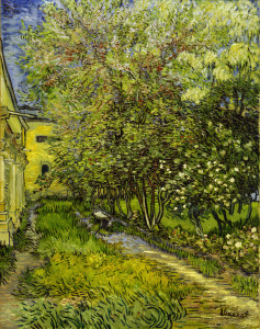 Picture no: 30002912 Van Gogh / St.-Rémy Hospital Garden Created by: van Gogh, Vincent
