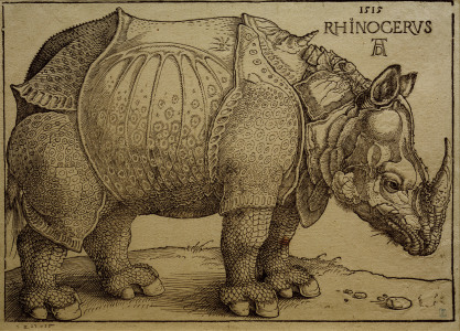 Picture no: 30002992 A.Dürer, Rhinoceros / Woodcut / 1515 Created by: Dürer, Albrecht