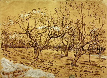 Picture no: 30003220 V.van Gogh, Orchard / Drawing / 1888 Created by: van Gogh, Vincent