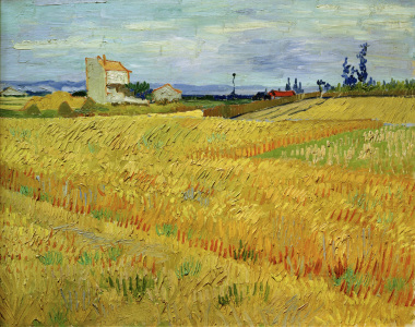 Picture no: 30003240 V.v.Gogh, Wheat Field / Paint./ 1888 Created by: van Gogh, Vincent