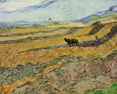 Picture no: 30003276 Vincent van Gogh / Enclosed Field / 1889 Created by: van Gogh, Vincent