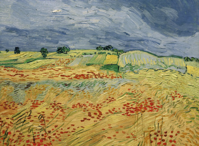 Picture no: 30003312 Van Gogh / Fields with Blooming Poppies Created by: van Gogh, Vincent