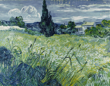 Picture no: 30003466 Van Gogh / Wheat-field / 1889 Created by: van Gogh, Vincent