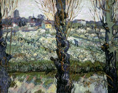 Picture no: 30003474 Van Gogh / View of Arles / 1889 Created by: van Gogh, Vincent