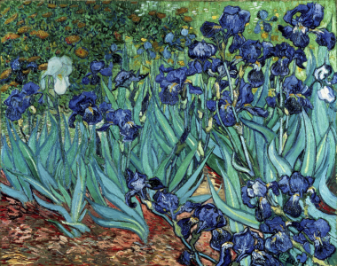 Picture no: 30003494 van Gogh / Irises / 1889 Created by: van Gogh, Vincent