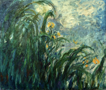 Picture no: 30004166 Monet / Yellow irises / 1924/25 Created by: Monet, Claude