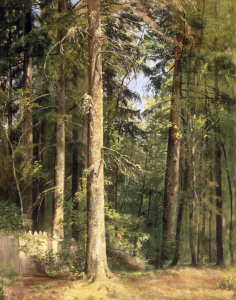 Picture no: 30007959 I.I.Shishkin, Forest, 1892 Created by: Schischkin, Iwan Iwanowitsch
