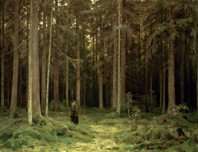 Picture no: 30007967 Shishkin / Countess Mordvinova's Forest Created by: Schischkin, Iwan Iwanowitsch