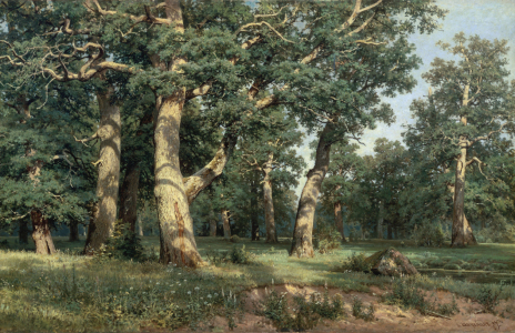 Picture no: 30007977 Shishkin / Oak Grove / Painting / 1887 Created by: Schischkin, Iwan Iwanowitsch