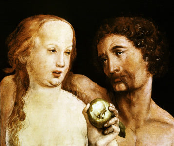 Picture no: 30008241 H.Holbein th.Y., Adam and Eve Created by: Hans Holbein der Jüngere