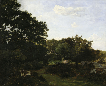 Picture no: 30008693 F.Bazille / Edge of the forest / 1865 Created by: Bazille, Frédéric