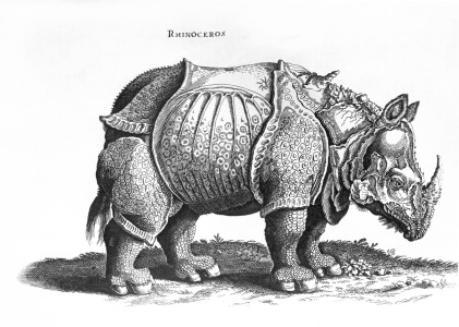 Picture no: 31000373 Rhinoceros, no.76 from 'Historia Animalium' by Conrad Gesner published in July 1 Created by: Dürer, Albrecht