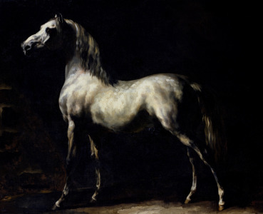 Picture no: 31000505 Study of a Dapple Grey Created by: Géricault, Théodore
