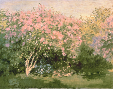 Picture no: 31000859 Lilac in the Sun, 1873 Created by: Monet, Claude