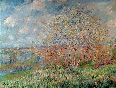 Picture no: 31000868 Spring, 1880-82 Created by: Monet, Claude