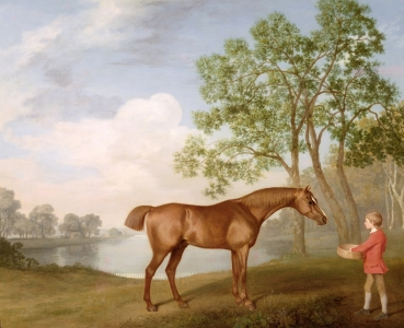 Picture no: 31001439 Pumpkin with a Stable-Lad, 1774 Created by: Stubbs, George