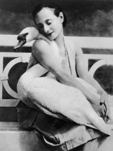 Picture no: 31001883 Anna Pavlova with her pet swan Jack, c.1905 Created by: Unbekannte Fotografen