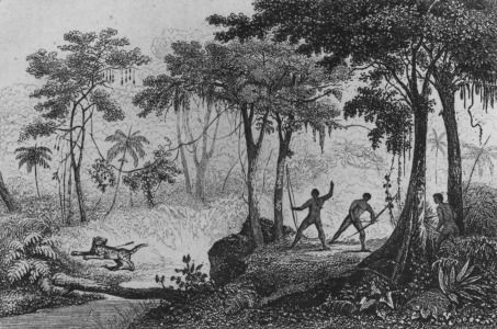 Picture no: 31001899 Jaguar Hunt, from 'Bresil, Columbie et Guyanes' by Ferdinand Denis and Cesar Fam Created by: Anonyme Künstler